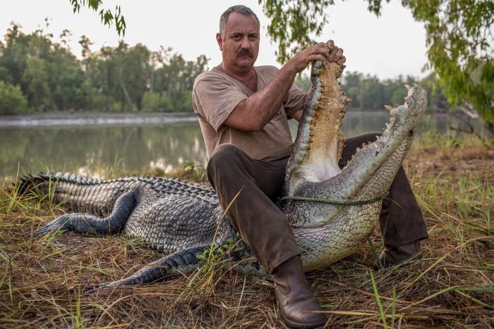 Mơ thấy mình cố gắng để giết cá sấu