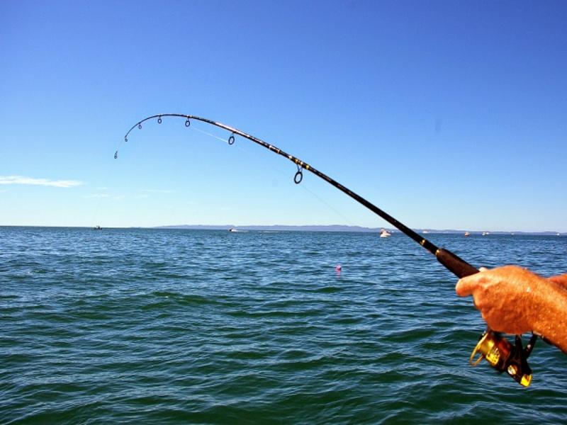 Cần câu là một dụng cụ được sử dụng để câu cá ở ao hồ, đồng ruộng hay sông suối